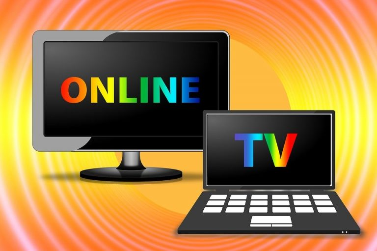 MEDIA LITERACY EDUCATION IN TELEVISION